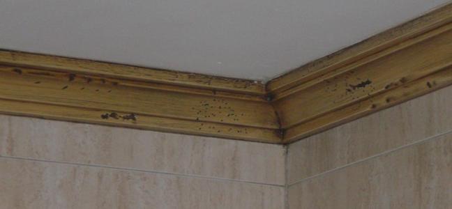 Imitaci n a madera en escayola y en hierro por pintura industrial y decorativa a barranquero - Escayola decorativa techo ...